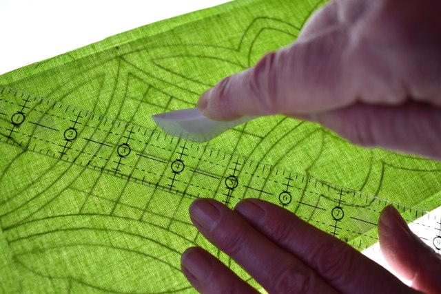 Carolyn Gibbs - Tracing the Tulip Trail quilting designfor the YQ fundraising Strip of the Month